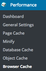 w3tc browser cache options